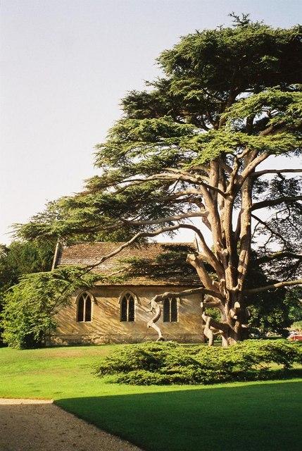 Hanford: cedar dwarfs parish church