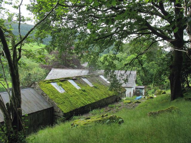 Fronwydd from the Glan y Mynach path