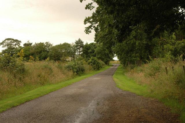 Road to Mounteagle