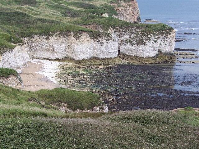 Selwicks Bay