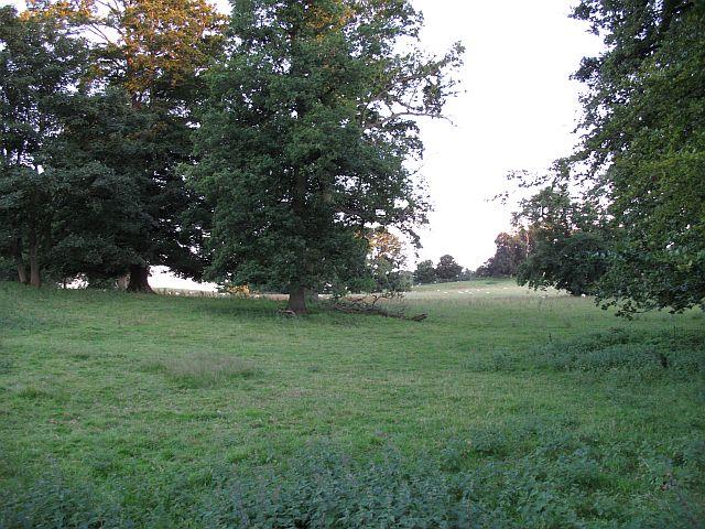 Brogyntyn Park