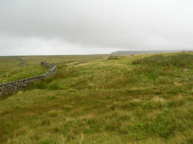 Waberthwaite Fell