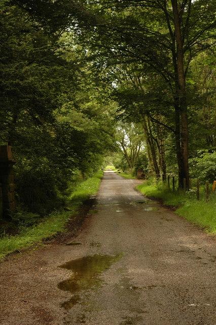 Road past Rosemount House