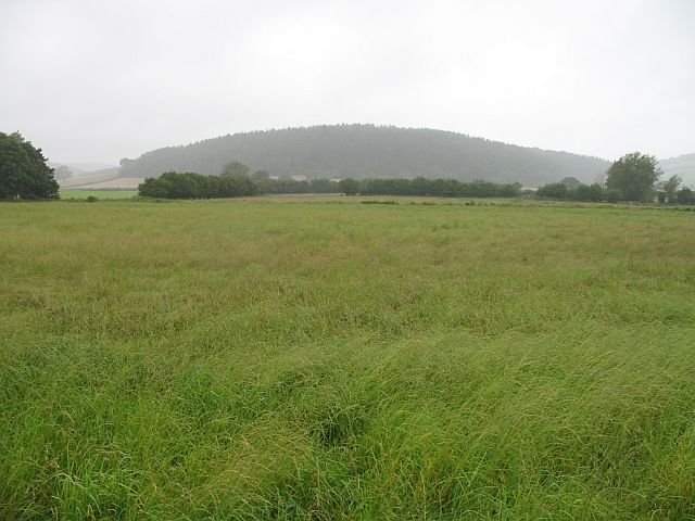Sodden crops
