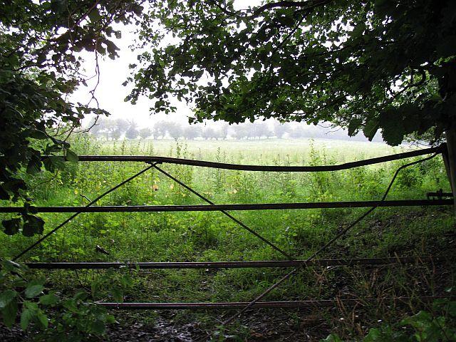 Gateway near Lower House