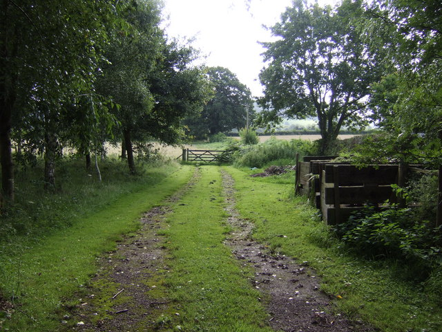 Track to the Usk meadows