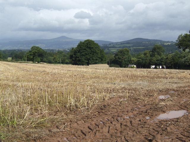 Stubble field near Neuadd