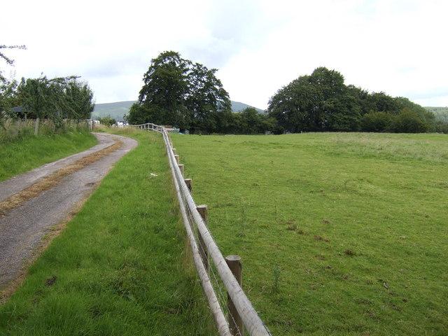 Upper Llwyn-celyn