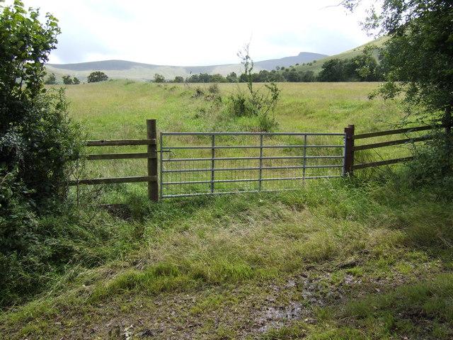 View east from Llwyncelyn-fawr