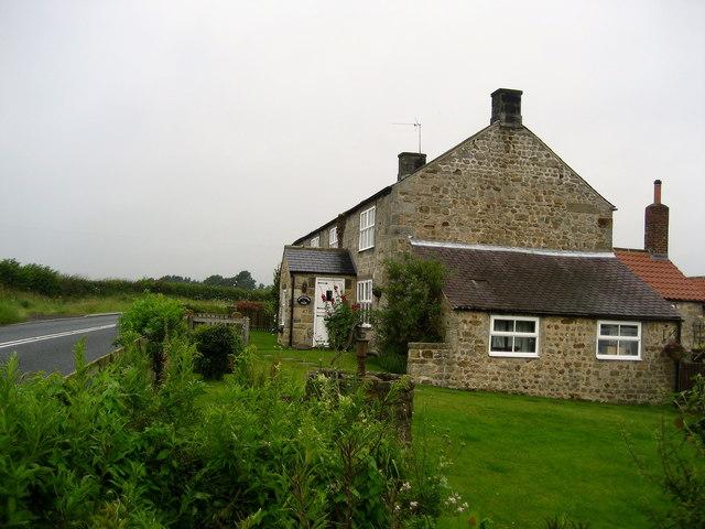 Clip'd Thorn Farm