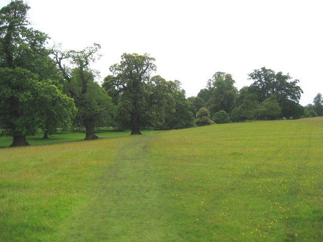 Path in Studley Park