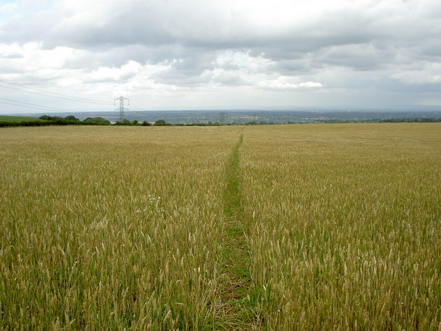 Eddisbury Way