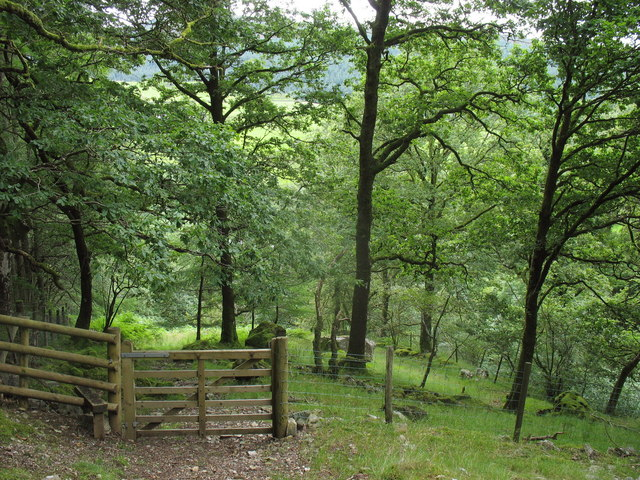 Looking back towards a gate and a stile on the Glan y Mynach path