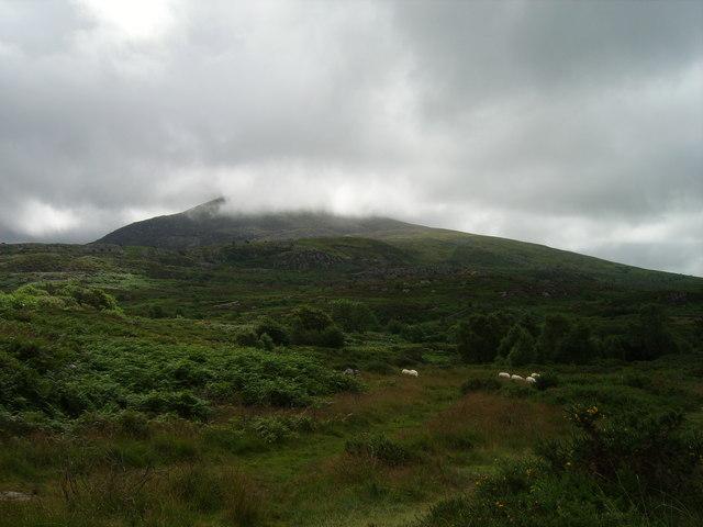 Moelfre hills