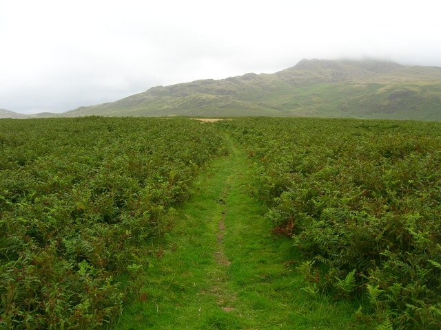Path to Birkby Fell