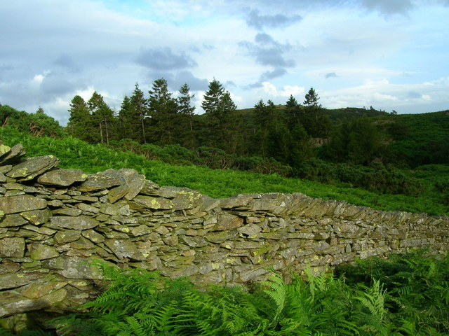 Birkmoss Plantation