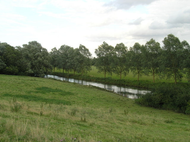 Willow Trees beside River Ouse