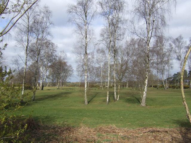 Birches on Swaffham Golf Course