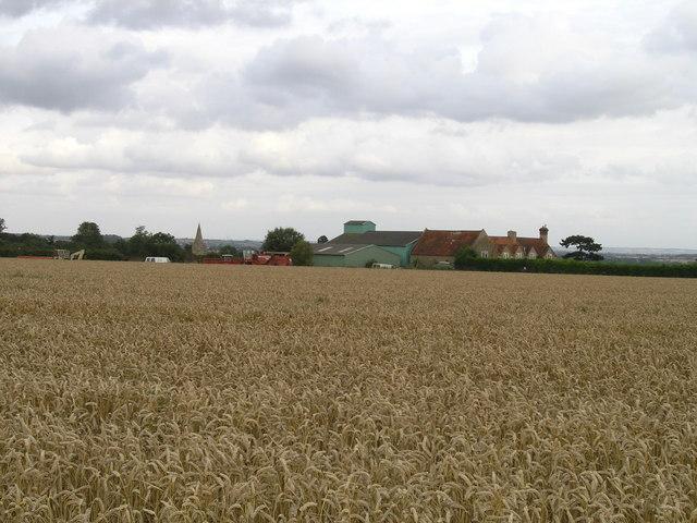 Hill Barn Farm and Pavenham Church Spire