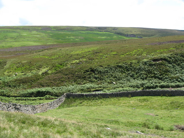 The valley of Henshaw Burn (2)