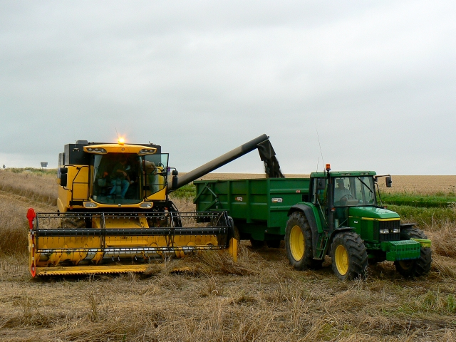 Harvesting of oilseed rape crop, near Winterbourne Bassett