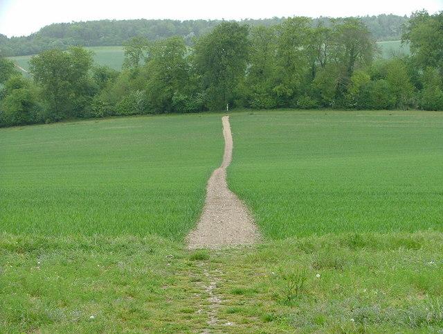 The Ridgeway Path