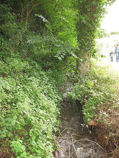Clatter Brook