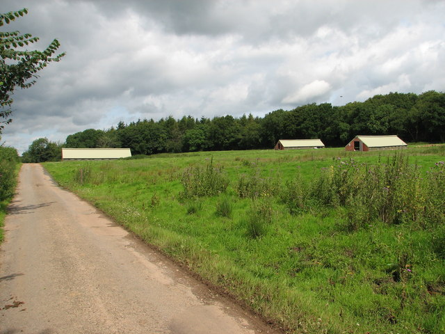 Free range poultry houses