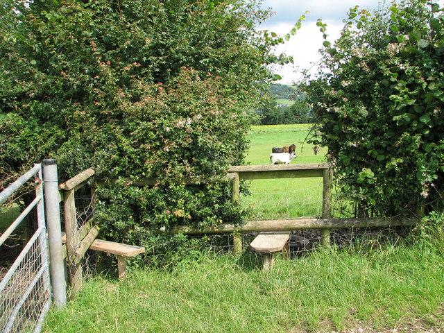 Stiles on Beeches Farm