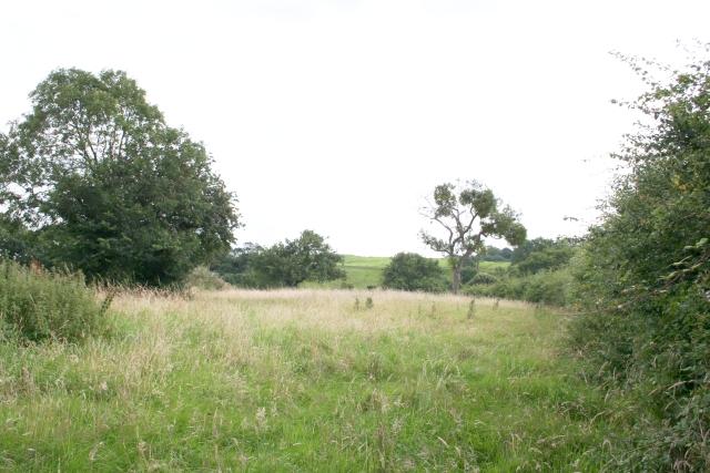 Old Orchard, Castlemorton