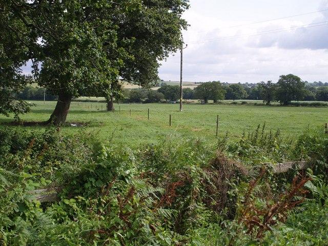 Field near Higher Farm