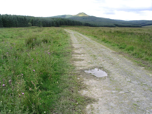 On a track heading for Stennishope