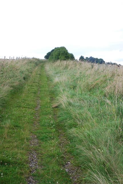 Track towards Down Barn