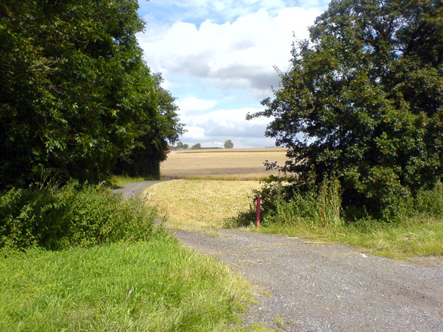 Access path to field