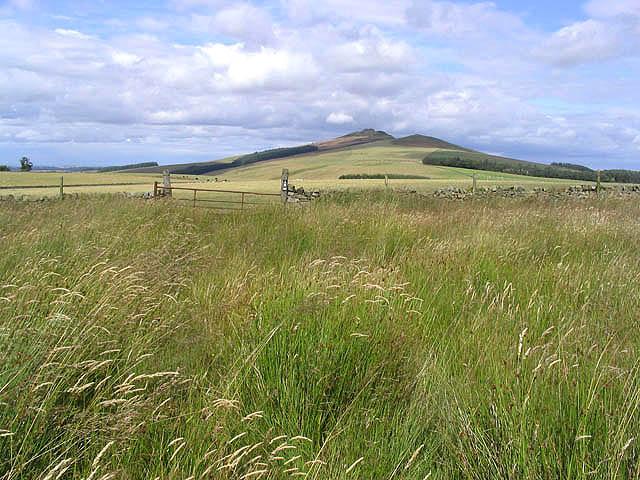 Border Farmland