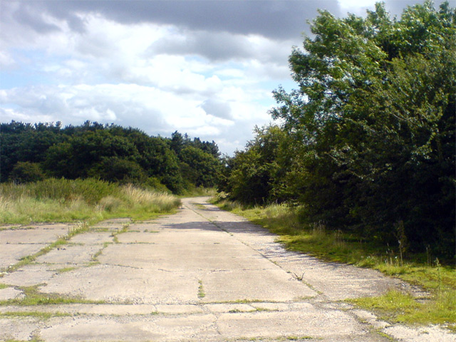 Disused airfield road near Pamela Plantation