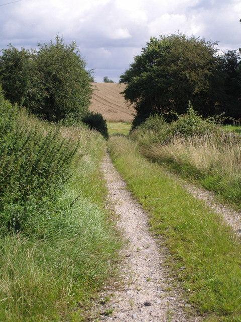 Footpath near Chillington