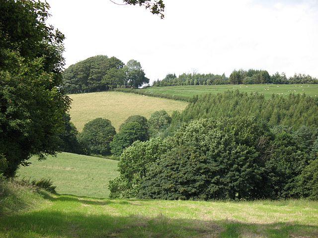 Fields, Yonkin Farm