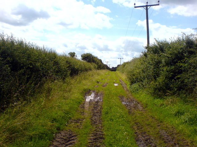 Bridleway near Norwell Lodge