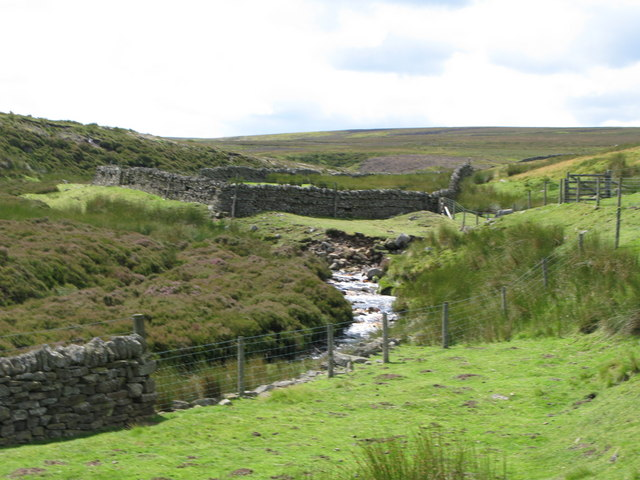 The valley of Henshaw Burn