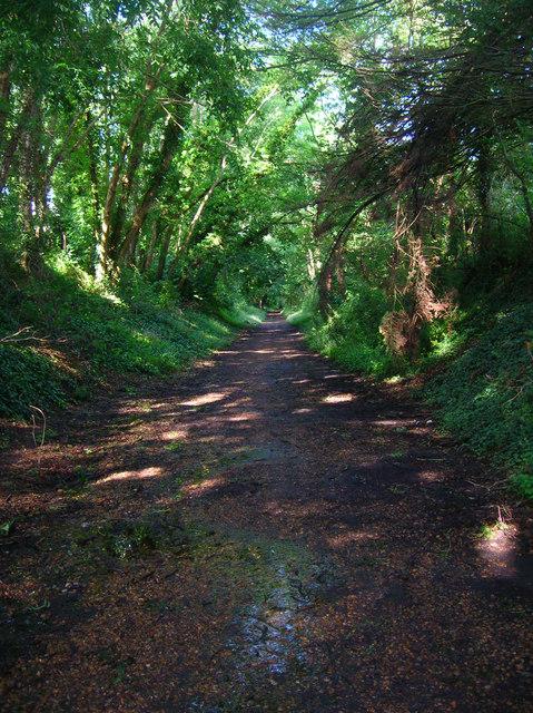 Sunshine Valley Trail