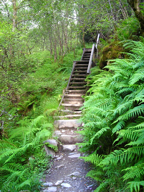 Steps on the West Highland Way