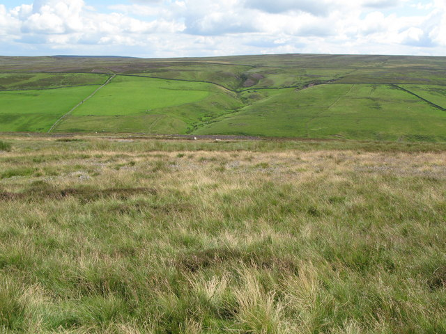 Moorland above Quickcleugh Burn