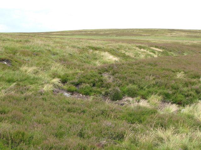 Riddlehamhope Fell (3)