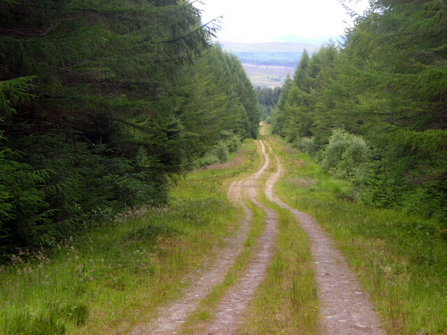 Long Straight Track in Leanachan Forest