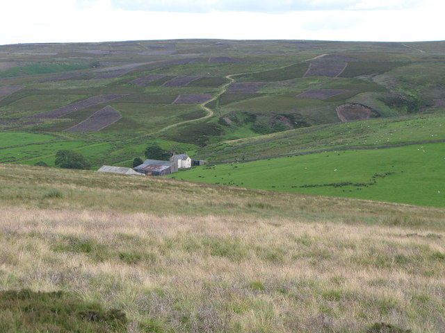 Moorland around Heatheryburn Farm