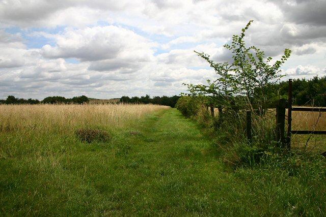 Bridleway to Hundon