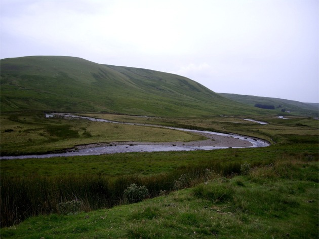 Meander on Afon Elan