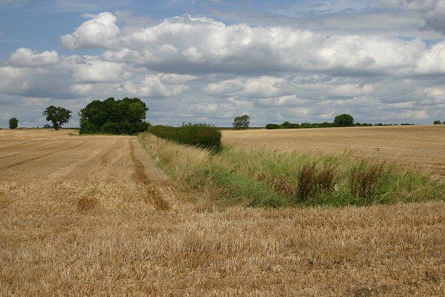 Farmland at Boyton End