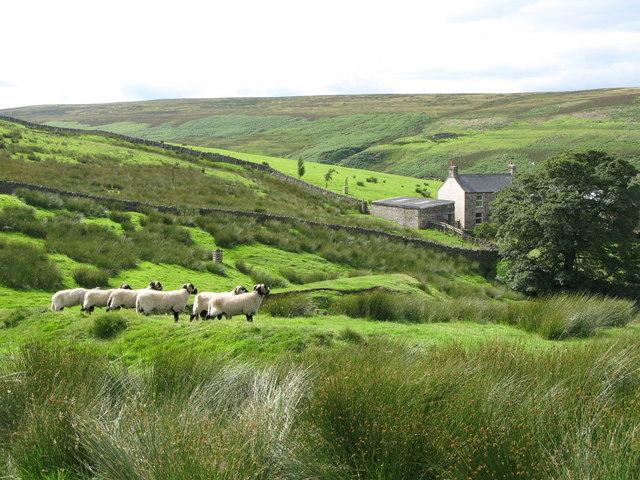 Heatheryburn Farm (2)